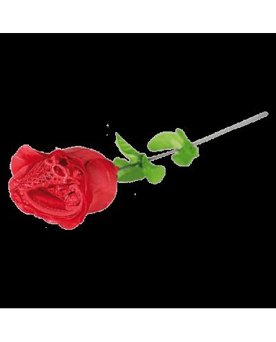 Rosa Con Tanga